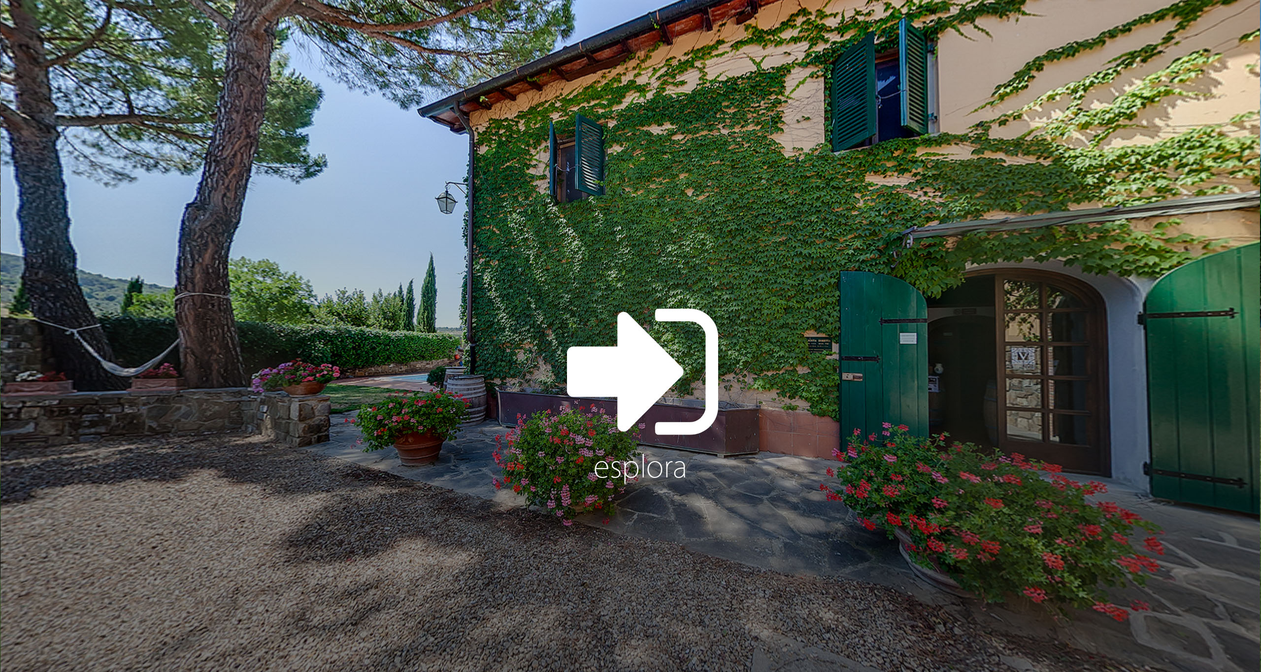 virtual tour reon studio fattoria viticcio